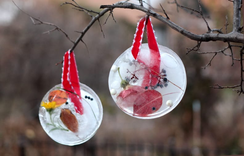 Ice Sun Catcher DIY Ornaments